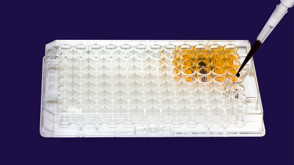 Pipette injecting liquid into microtiter plate on white background