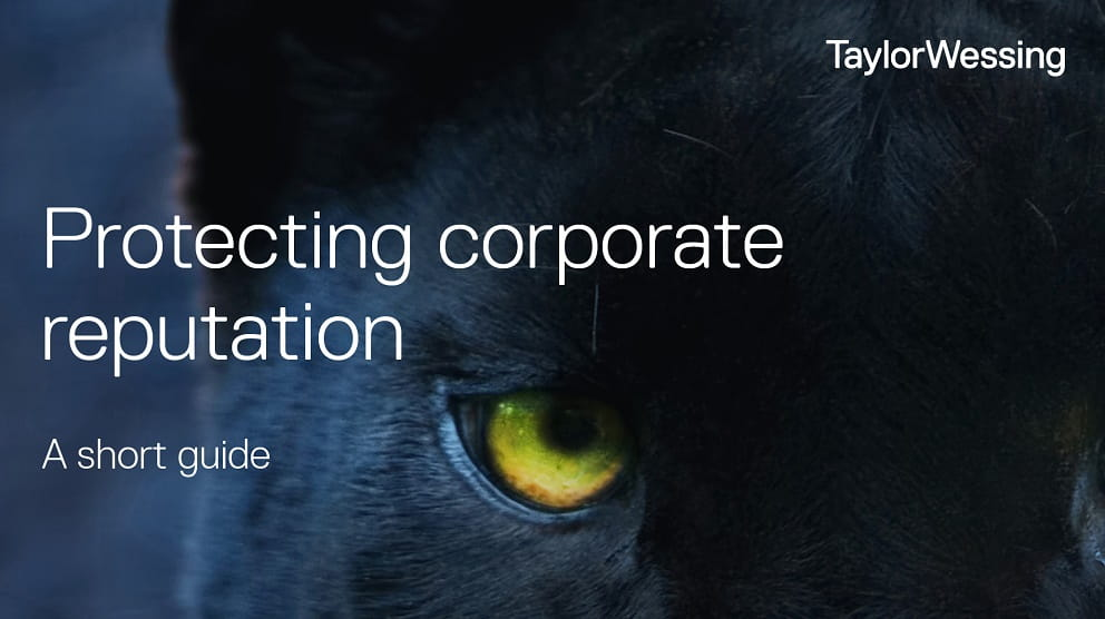 Close up photo of a black cat with a yellow eye, text reads Protecting your corporate reputation, a short guide